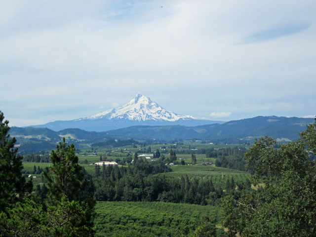 Mt_hood_river_valley